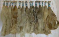 Evropské vlasy plavá